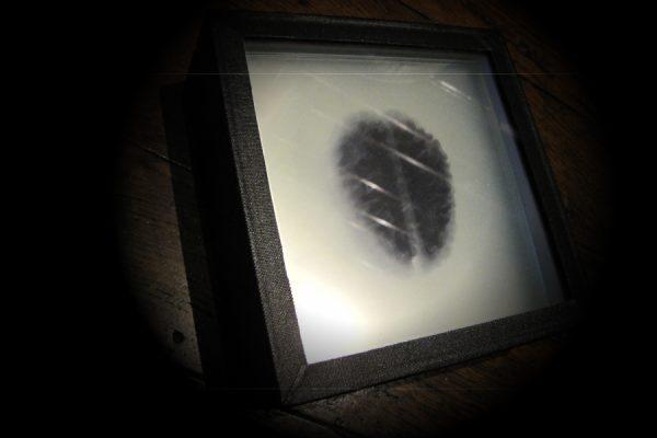 reflexion4portfolio